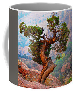 Twisted, Cedar Pine, Zion National Park, Utah Coffee Mug