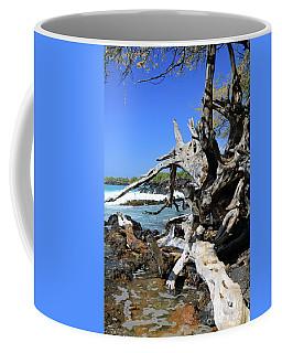 Twisted Tropical Beautiful Coffee Mug by Mary Haber