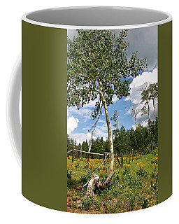 Coffee Mug featuring the photograph Twisted Trunk by Kristin Elmquist