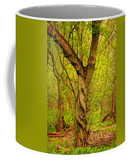 Coffee Mug featuring the photograph Twisted by Viviana  Nadowski