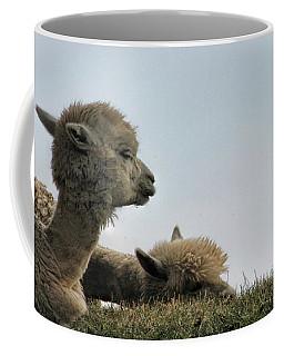 Two Alpaca Coffee Mug