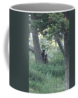 Two Bear Cubs Coffee Mug