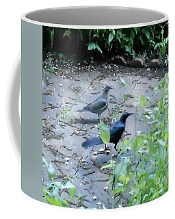 Coffee Mug featuring the photograph Two Birds by Felipe Adan Lerma