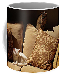 Coffee Mug featuring the photograph Two Cats by John Kolenberg