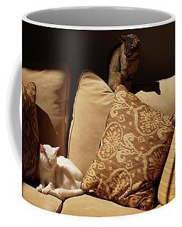 Two Cats Coffee Mug by John Kolenberg