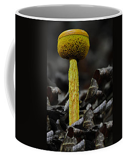 Two Colored Bolete Coffee Mug