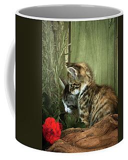 Two Cute Kittens Coffee Mug