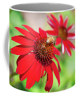 Coffee Mug featuring the photograph Two Flowers For Every Bee by Brian Hale