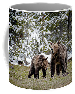 Two Grizzly Bears Coffee Mug