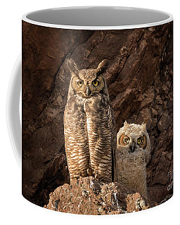 Two Hoots Coffee Mug