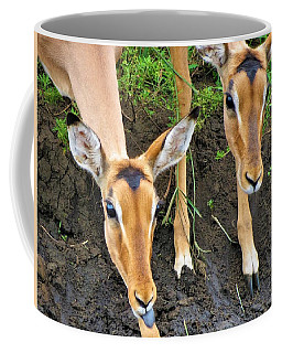 Two Impala Coffee Mug
