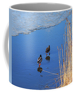 Two Mallards On Ice Coffee Mug