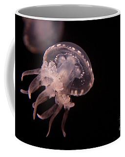 Two Moon Jellies Coffee Mug