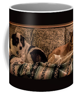 Coffee Mug featuring the photograph Two On The Couch by Mick Anderson