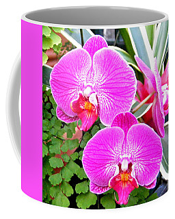 Two Orchids Coffee Mug