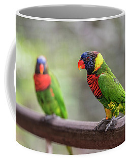 Coffee Mug featuring the photograph Two Parrots by Pradeep Raja Prints