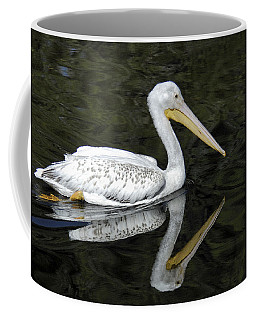 Coffee Mug featuring the photograph Two Pelicans by Howard Bagley