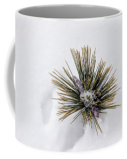 Two Pine Cones Coffee Mug by Marcia Lee Jones