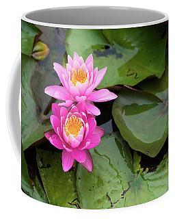Two Pink Lilies Coffee Mug