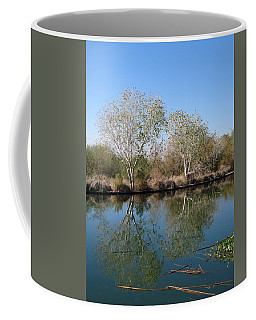 Coffee Mug featuring the photograph Two Reflected by Laurel Powell