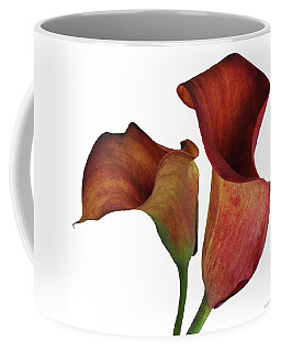 Two Rust Calla Lilies Square Coffee Mug
