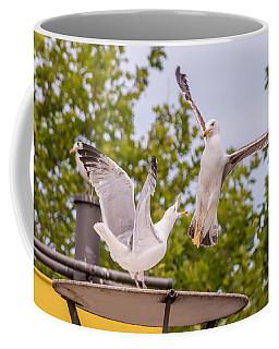 Two Seabird Fighting Coffee Mug