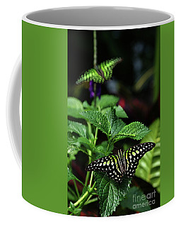 Two Tailed Jay Butterflies- Graphium Agamemnon Coffee Mug