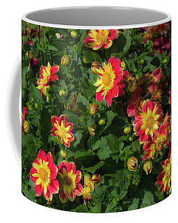 Two Tone Dahlias Coffee Mug
