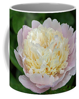 Coffee Mug featuring the photograph Two-toned by Sandy Keeton