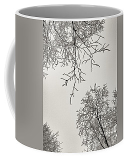 Two Trees Reaching Towards Each Other Coffee Mug