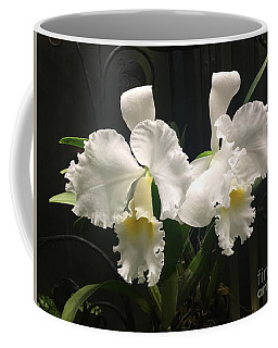Two White Orchids Coffee Mug