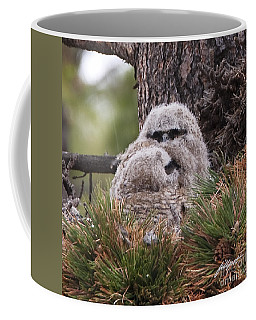 Two Whooo's  Coffee Mug