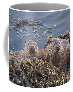 Two Young European Otters Coffee Mug