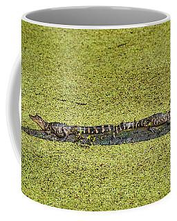 Two Young Gators Coffee Mug