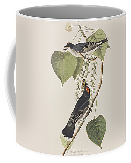 Tyrant Fly Catcher Coffee Mug