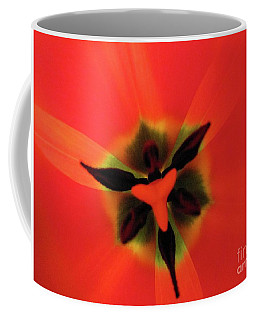 Coffee Mug featuring the photograph Ultimate Feminine by Rosanne Licciardi