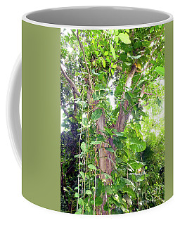 Under A Tropical Tree With Vines Coffee Mug