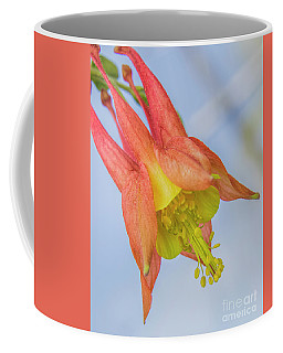 Under A Wild Columbine Coffee Mug by Barbara Bowen