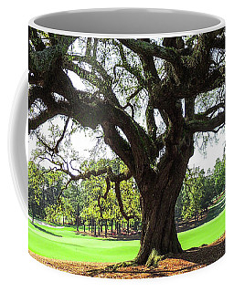 Under An Augusta Oak Coffee Mug