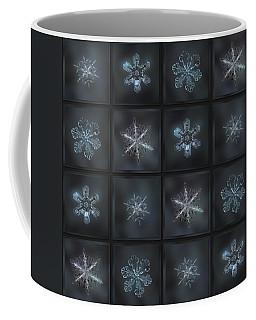 Under The Grey Sky II Coffee Mug