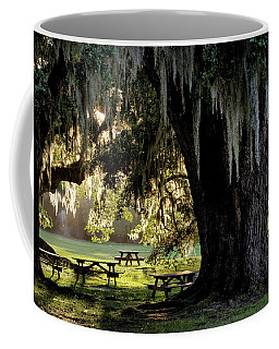 Coffee Mug featuring the photograph Under The Old Oak Tree by Jim Hill