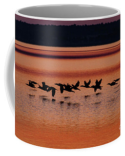 Coffee Mug featuring the photograph Under The Radar by William Norton