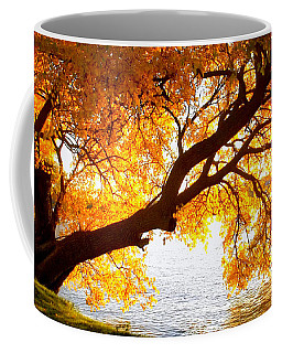 Coffee Mug featuring the photograph Under The Yellow Tree by Viviana  Nadowski