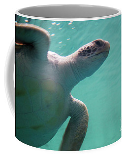 Coffee Mug featuring the photograph Underwater Race by Ana Mireles
