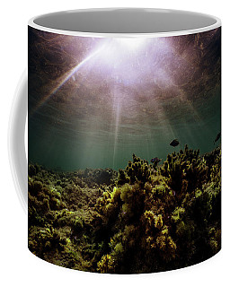Underwater Sunset Coffee Mug