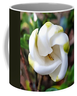 Unfolding Beauty Coffee Mug