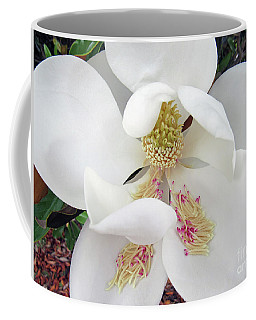 Unfolding Beauty Of Magnolia Coffee Mug
