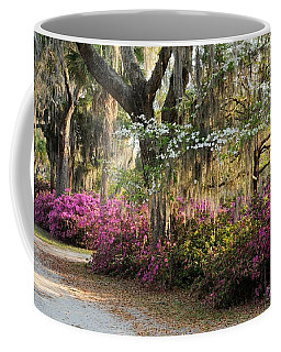 Unpaved Road In Spring Coffee Mug