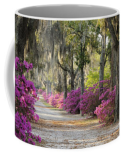 Unpaved Road With Azaleas And Oaks Coffee Mug