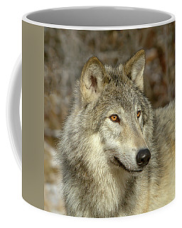 Coffee Mug featuring the photograph Untamed Spirit by Jack Bell